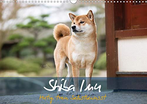 Shiba Inu - mutig, treu, selbstbewusst (Wandkalender 2021 DIN A3 quer)