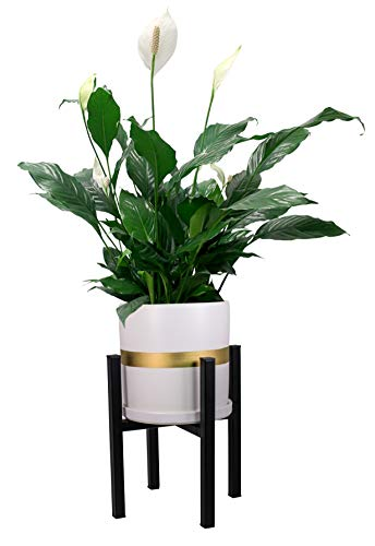 Mid Century Plant Stand and Pot Planter with Drainage – 2 in 1 Metal Plant Stand with 8 inch Modern Ceramic Planter Included – White Gold Ceramic Planter (White Gold)