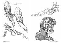 Anatomia artistica. Carnet di morfologia #6