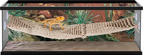 Penn Plax Reptology Lizard Lounger Bridge for Bearded Dragons, Iguanas, and Other Reptiles, 700 g