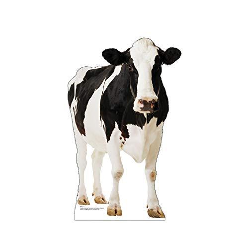 Advanced Graphics Cow Life Size Cardboard Cutout Standup