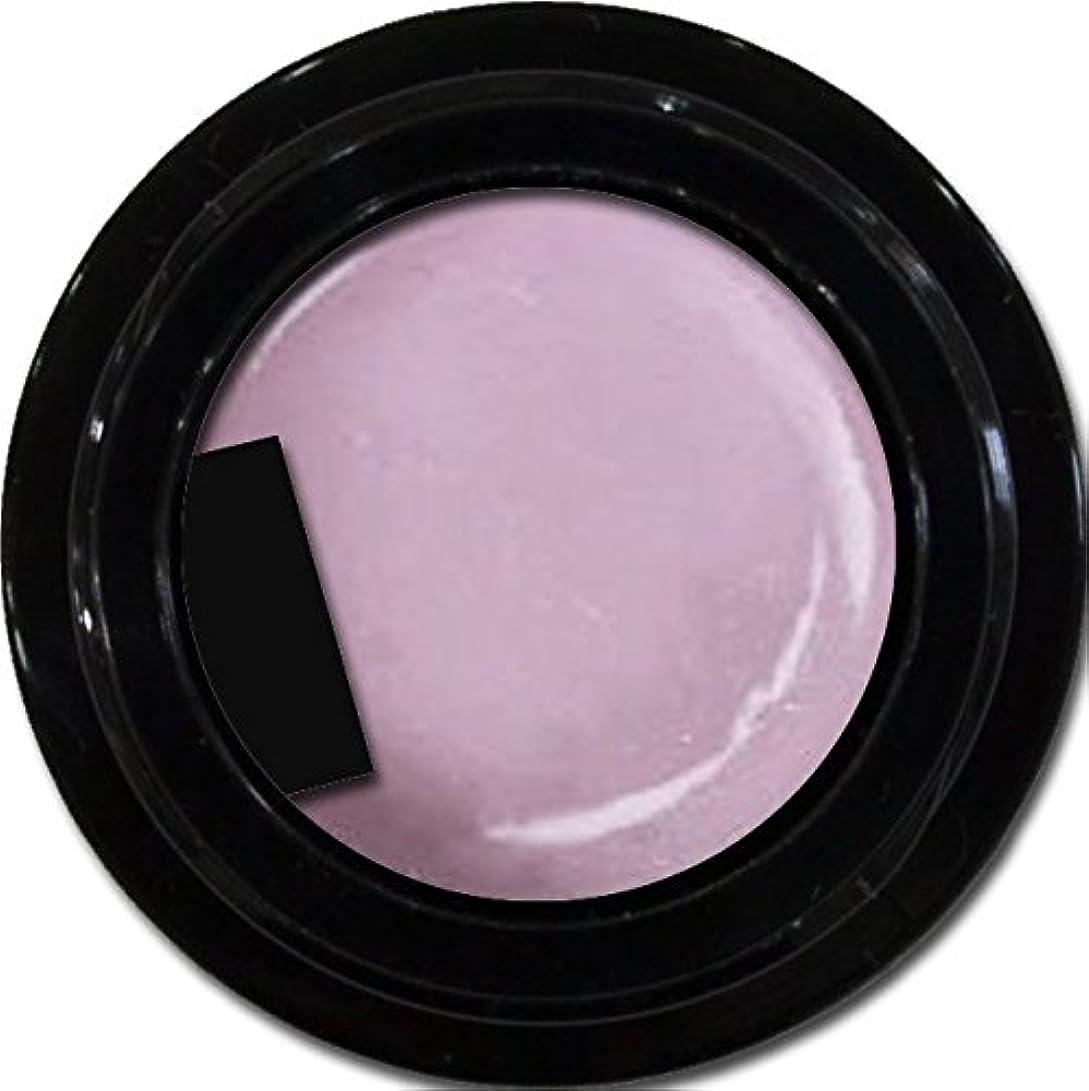 曖昧な東部売り手カラージェル enchant color gel P503 RoyalParty 3g/ パールカラージェル P503ロイヤルパーティー 3グラム