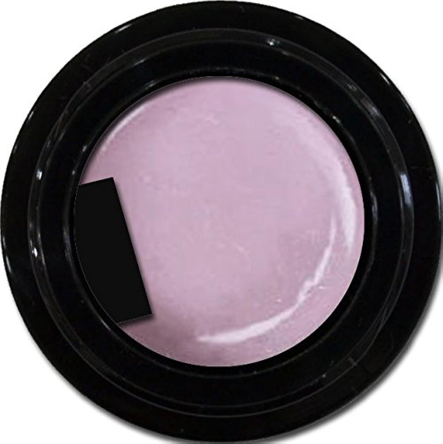 シットコム嫌がる影カラージェル enchant color gel P503 RoyalParty 3g/ パールカラージェル P503ロイヤルパーティー 3グラム