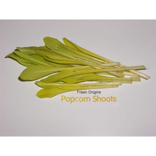 shoots Pop Corn Shoots - 4 x 4 oz