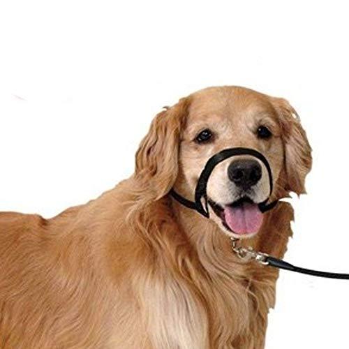Bozal Collar educador para Perro   Bozal de Entrenamiento para Perro   Bozal Entrenamiento Talla XS