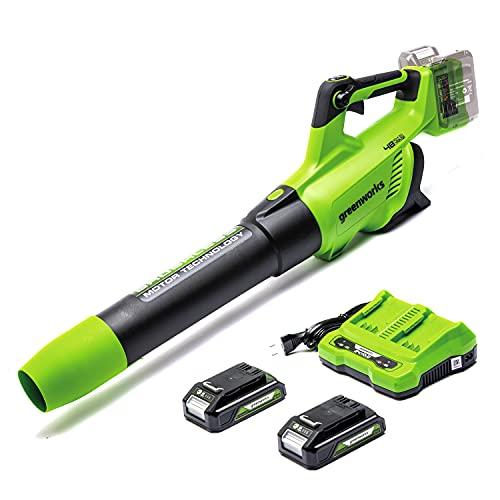 Greenworks Tools Soffiatore Assiale a Batteria GD24X2BVK2X, Li-Ion 2x24 V Velocità di Soffiaggio 225 km h, Ventilatore Assiale Controllo Elettronico Giri con 2 Batterie 2A h e Caricatore a Due Posti
