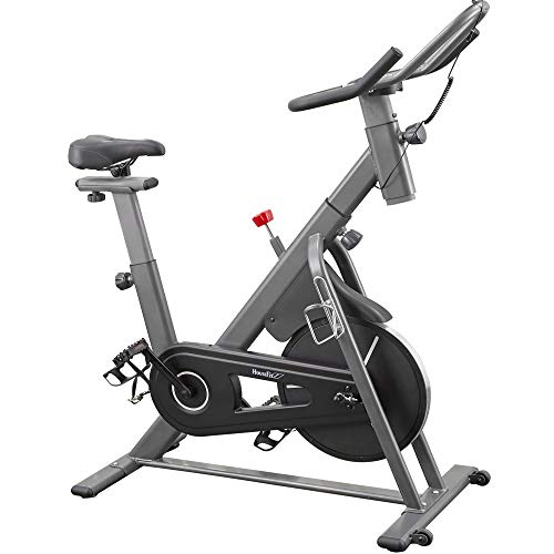 HouseFit Indoor Cycling Bike Stationary Exercise Bike Magnetic Resistance 300+ Lb Capacity Quiet Belt Drive with Comfortable Seat Cushion iPad Mount LCD digital monitor(2021 New Version)