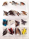 BestCity Fly Fishing Box of Large Wet Seatrout - Sewin flies pack of 30 flies size 6