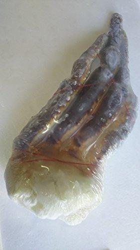 生 たらば蟹 ( 肩 ) シュリンク ( 真空 ) 総重量 1kg 冷凍 加熱用 特大 ロシア産 たらば タラバガニ 蟹 カニ かに