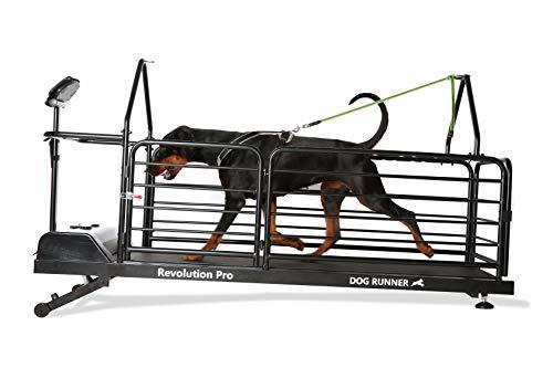 Dog Treadmill, Dog Runner Treadmill Revolution Pro