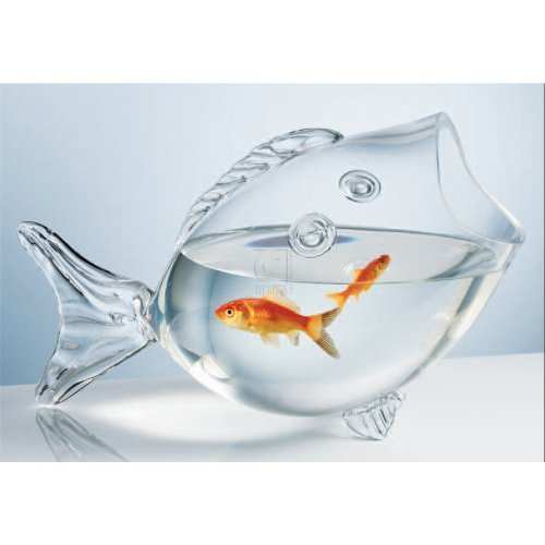 Magnificent Fish Bowls For Centerpieces Amazon Com Interior Design Ideas Philsoteloinfo