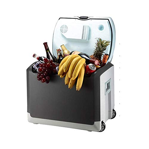 Koelkast auto, Portable Cool Box Mini koelkast 12v 220v, Cooler Warmer Outdoor Travel 40 Liter (Kleur: Zwart, Maat: A) LOLDF1