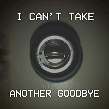 I Can't Take Another Goodbye