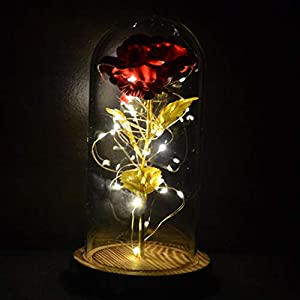Rose Flower in Glass Dome with LED String Lights Unique Gifts for Anniversary and Birthday Wedding, Valentine's Day, Christmas, Women, Girls (Red Rose & Burnt Wood Base)