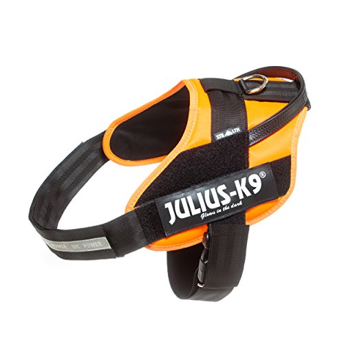 Julius-K9 16STEALTH-FOR-3 IDC Powergeschirr, Größe: 2XL/3, UV-orange