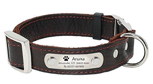 aplusashop ID Echtleder Halsband mit Edelstahlplatte + Gravur nach Wunsch Hunde in Braun (L: 2,5 x 35-46cm)