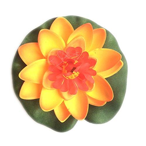 Dosige - Teichpflanzen in Orange, Größe 10CM