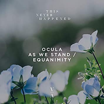 As We Stand / Equanimity