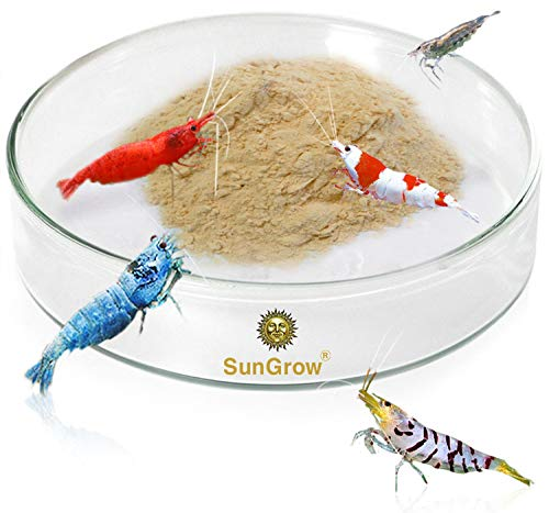 SunGrow Tough Borosilicate Glass Shrimp Feed Dish, 2.5 Inches Wide and 0.5 Inch Deep, Avert Food Spilling, Heavy-Duty, Transparent Basin for Shrimp Food or Fish's Tubifex Worms