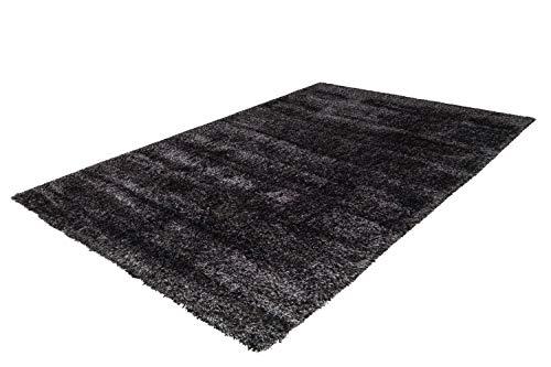 Arte Espina Shaggy Poils Longs Tapis Uni Salon Tapis Anthracite Noir - Noir, 200cm x 290cm