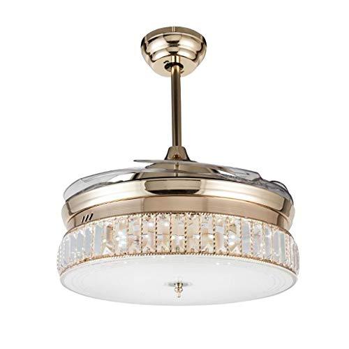 Duor Home Plafondventilatoren, moderne, onzichtbare led-plafondventilator, acryllicht-kristallen kamer-lamp-frequentie-toevoeging van metaal, plafondventilator, licht