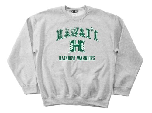 Hawaii Rainbow Warriors 50/50 Blended 8-Ounce Vintage Mascot Crewneck Sweatshirt, Large, Sport Grey
