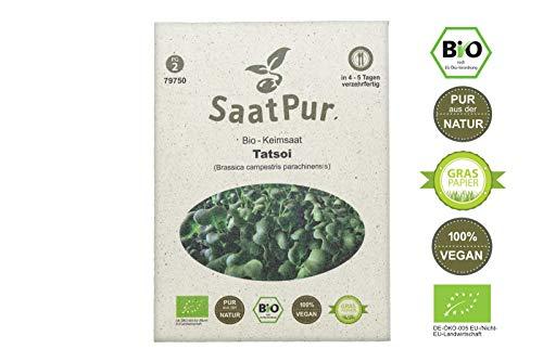 SaatPur Bio Keimsprossen - Keimsaat für Tatsoi Sprossen, Microgreens - 20g