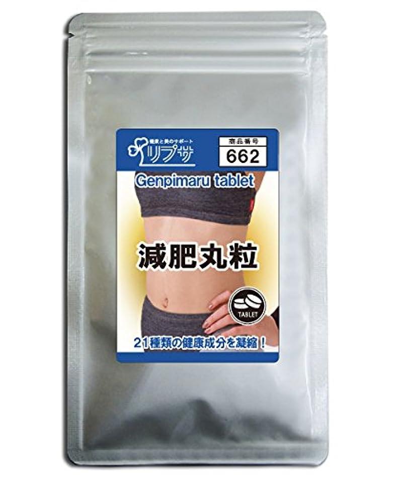 揮発性満足できるモディッシュ減肥丸粒 約3か月分 T-662
