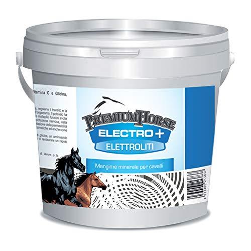 Premium Horse Electro + - 2,5 kg