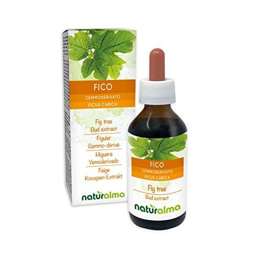Ficus Carica Gemmoderivato analcoolico NATURALMA 100 ml