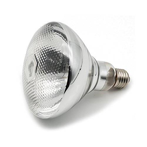 Fengrun Infrared Heating Lamp Clear Hard Explosion-Proof Glass eco-Friendly UV Coating for Animal,Bathroom Warming Light Bulb(250w,120v)