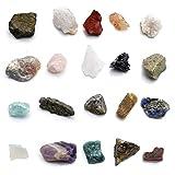 CrystalTears 20 Pezzi di Pietra Grezza Minerale Pietre Naturali Gemme Preziose Kit Scienza Geologica Collezione per Bambini Ragazzi Studente Appassionati di Geologia