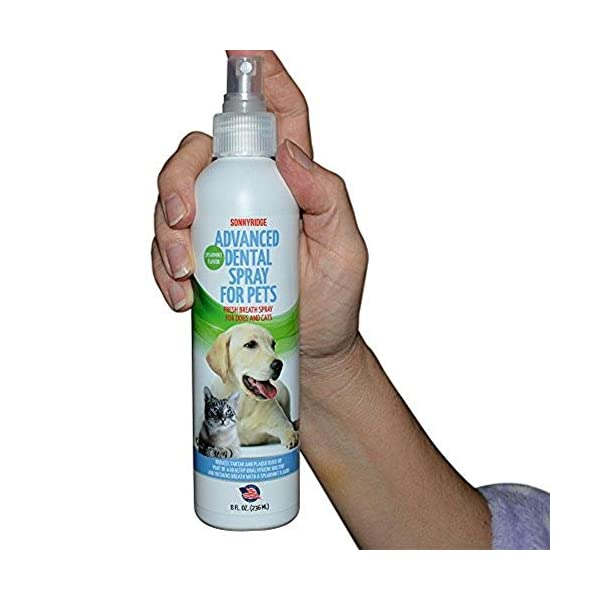 Sonnyridge Dog Dental Spray Removes Tartar, Plaque and Freshens Breath Instantly. The Most Advanced Dental Spray for Healthy Teeth, Gums and Oral Health Care for Your Dog, Cat or Pet – 1-8 oz. Bottle