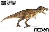 Rebor 2020 1/35 サイズ ティラノサウルス GNG02 03 SA T-REX Tレックス 大きい 肉食 恐竜 リアル フィギュア PVC プラモデル おもちゃ 模型 プレゼント プレミアム 40cm級 オリジナル 塗装済 完成品 (TYPE A)