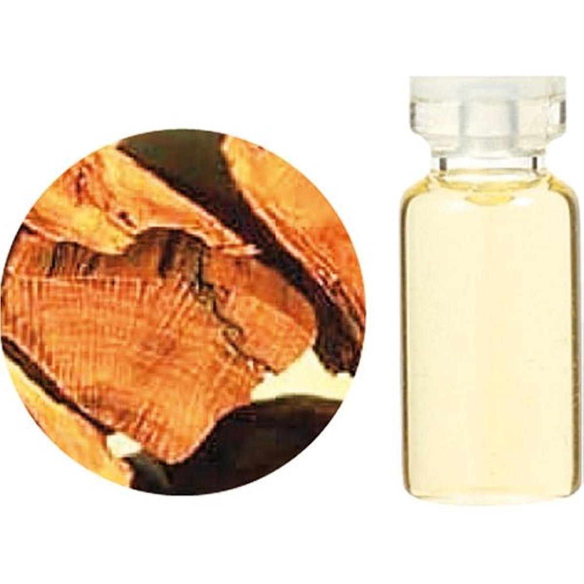ムスタチオ近代化する負荷生活の木 エッセンシャルオイル サンダルウッド 10ml