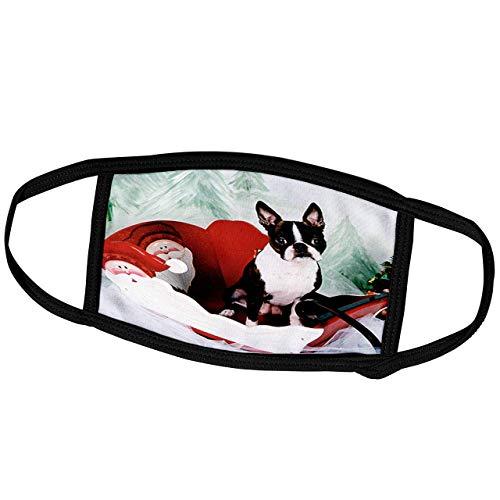 Promini - Masque de protection pour chien Boston Terrier - Molly Boston Terrier - Masque de protection extérieur