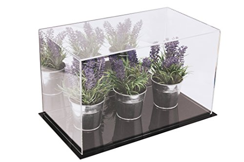 Better Display Cases Versatile Acrylic Display Case with Mirror - Medium Rectangle Box with Black Base 14