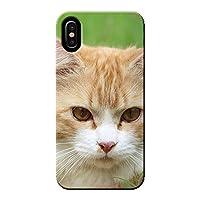 Galaxy A52 5G SC-53B ケース 猫 CAT ペット ネコ ねこ 薄型 スマホ ハードケース ねこ C ギャラクシー C014201_03