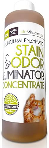 Top 10 Best urine remover carpet cleaner Reviews