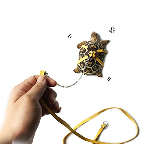 ASOCEA Haustier-Hundegeschirr, aus Leder, für Schildkröten, Reptilien, Gelb