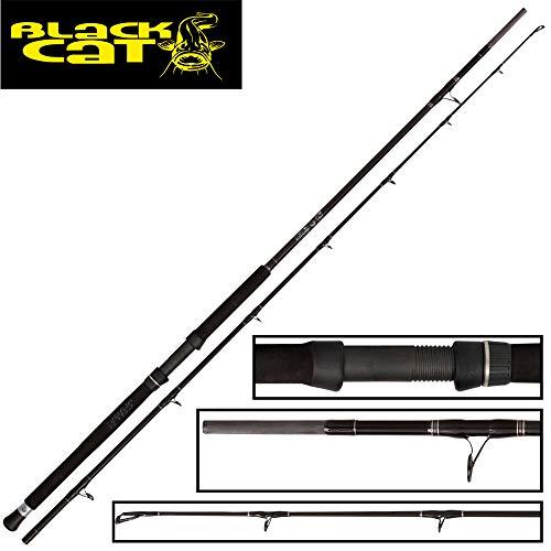 Black Cat Buster 3m 300-500g Wallerrute, Angelrute zum Wallerangeln, Welsrute zum Angeln auf Waller, Wallerangel zum Welsangeln