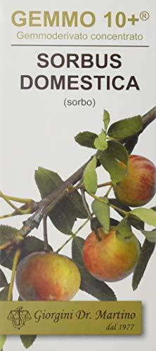 Dr. Giorgini Integratore Alimentare - Gemmoderivato Di Sorbo (Sorbus Domestica) Analcolico - 100Ml