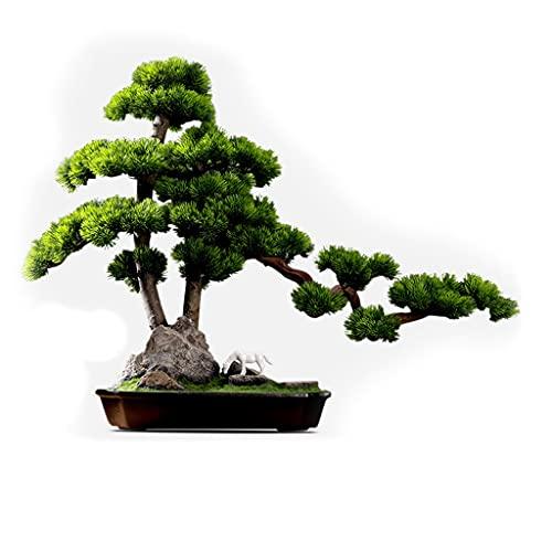 Welcome Kiefer Bonsai Simulation Baum...