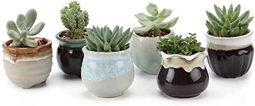 flower pot Macetero colgante de cerámica de 6,5 cm, base negra y blanca, juego de serie para plantas suculentas, cactus, maceta, paquete de 1 paquete de 6 personalidades (tamaño 6)