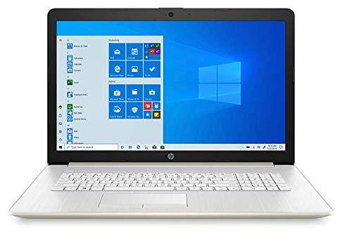 2020 HP 17.3' HD+ LED Touchscreen Laptop Intel Core i7-1065G7 8GD DDR4 512GB SSD DVDRW Windows 10 (Renewed)