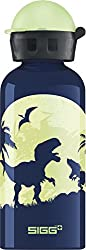 4. Sigg Glow Moon Dinos with light effect water bottle, 14oz