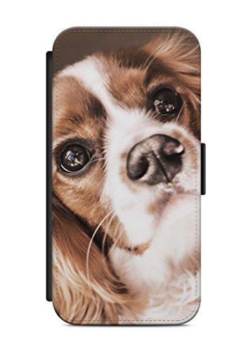 aina Geeignet für iPhone 5 / 5s & für iPhone SE Flipcase Handytasche Hülle mit Magnetverschluss auffklappbar H& Dog Motiv Bild