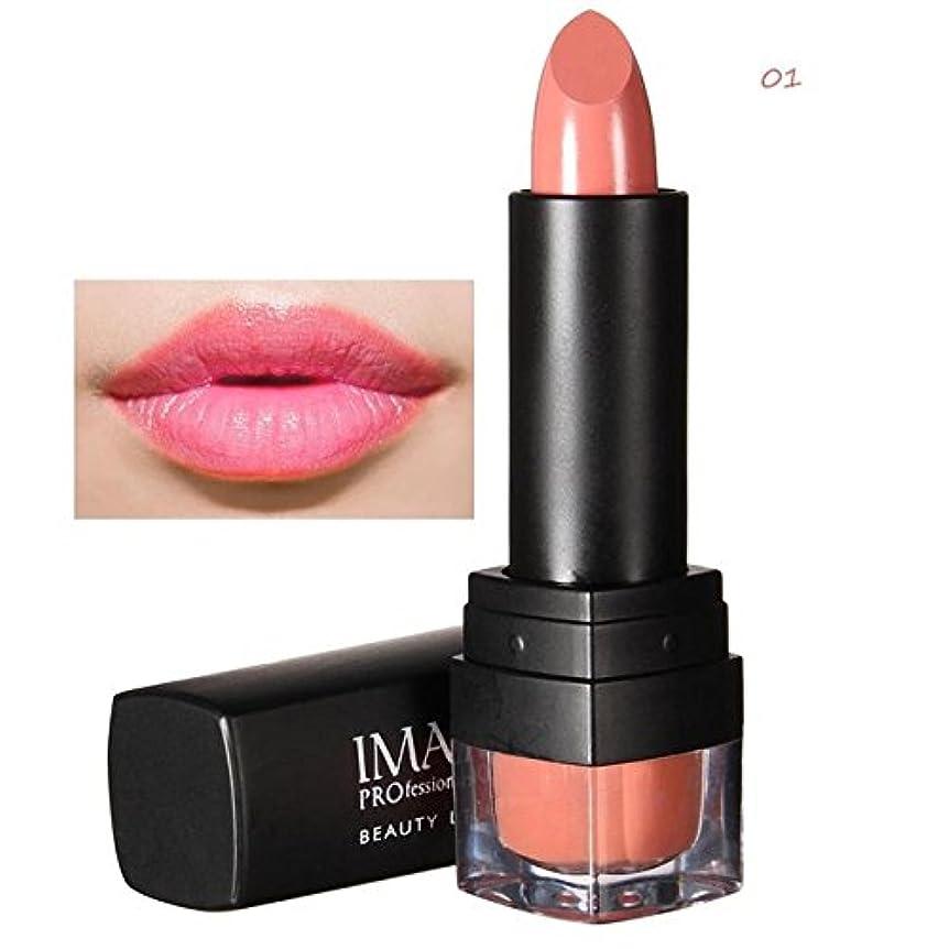 マイナス作ります通貨NOTEイマジック防水ヌードマットベルベット光沢のあるリップグロス口紅リップクリームセクシーな赤い唇の色合い12色女性ファッションメイクギフト