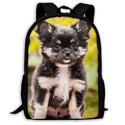 Schooltas, Chihuahua Dogs Animals reistas, modieuze college tassen voor tieners schoolcamping, 43x28x16cm