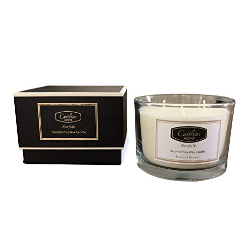 Caitlins Home Aromatherapy Eucalyptus Soy Wax Candle